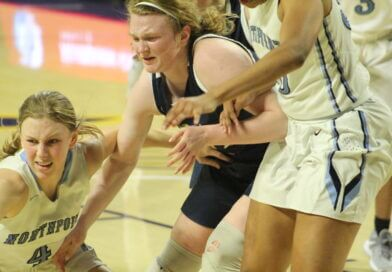 Northpoint falls to Lady Lions in semifinals